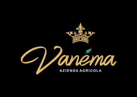 Brand Identity Vanema